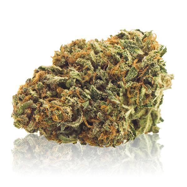CannaBe HOLY WEED (0.2 Line) - CannaBe