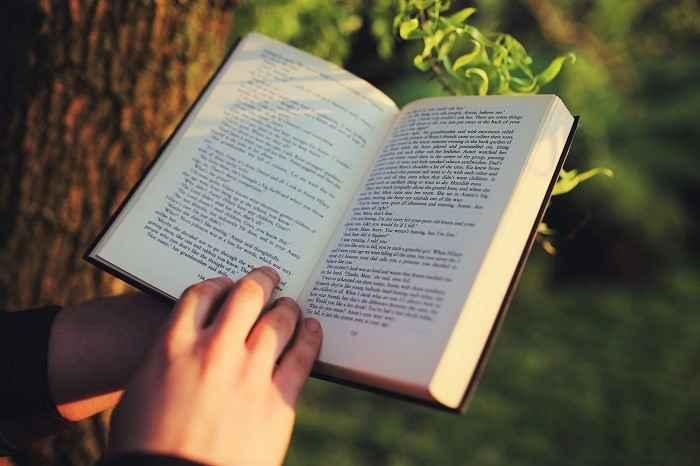Libri sulla marijuana: i 5 migliori testi sul mondo della canapa