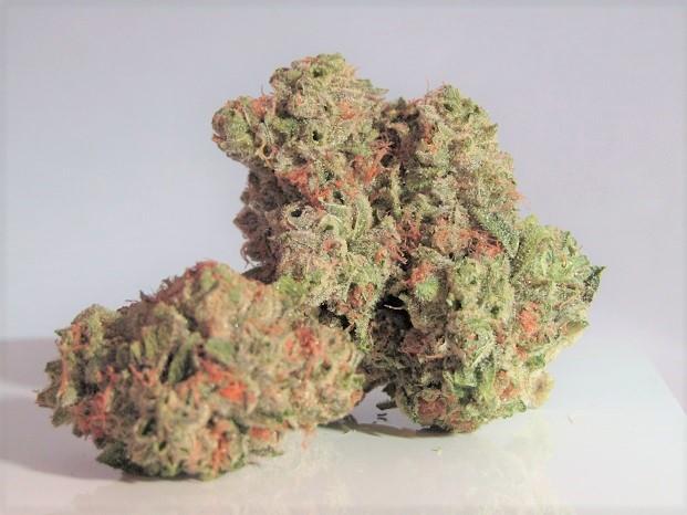 Cannabis Cup: Che Cos'è e Come Funziona? - Cannabe